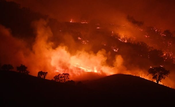 Australia fires are harbinger of planet's future, say scientists