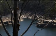 Austrlian Bush fires threaten drinking water safety – and the consequences could last decades