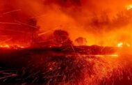 Wildfires rage in California and other Western states of US