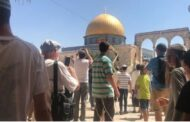 Jewish settlers storm Al-Aqsa Mosque compound